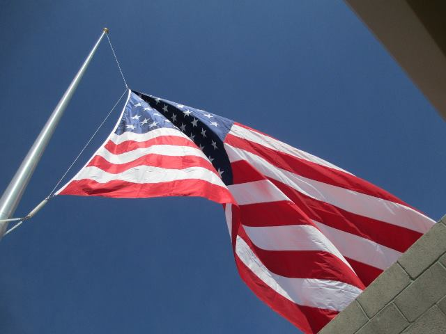 veteran's day flag